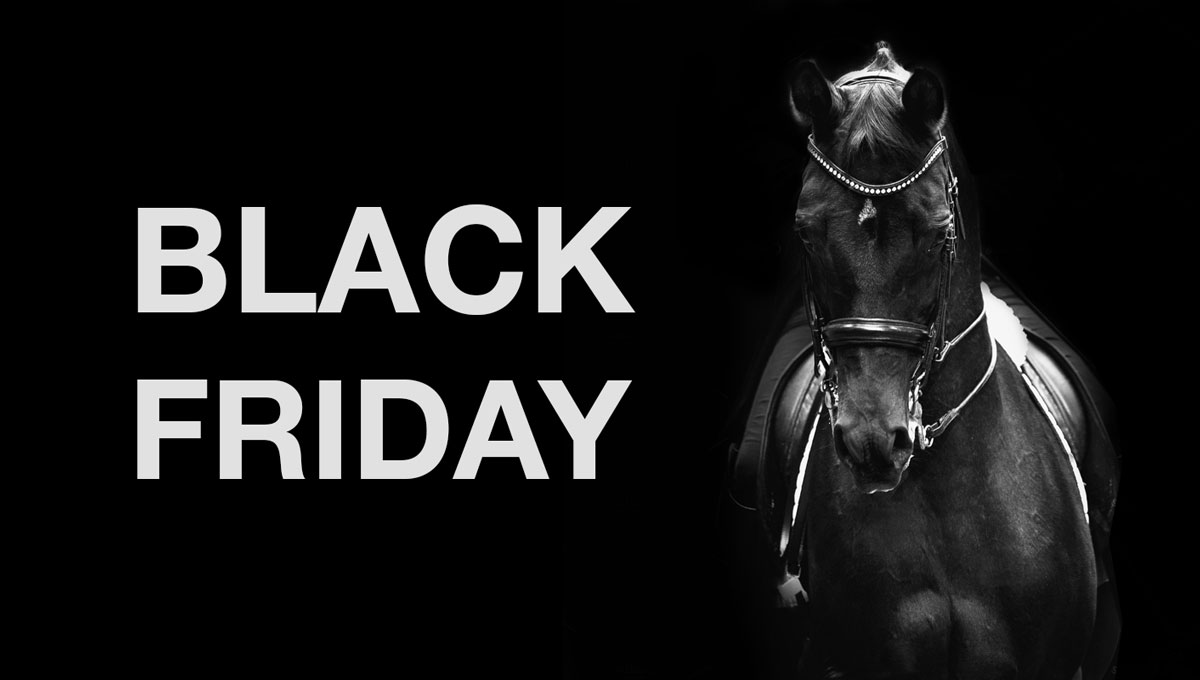 BLACK FRIDAY Hest & Rytter 2020