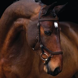 Rambo Micklem Competition Bridle - brun