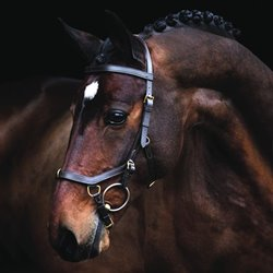 Rambo Micklem Multibridle - sort